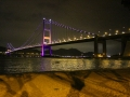 View of Tsing Ma Bridge
